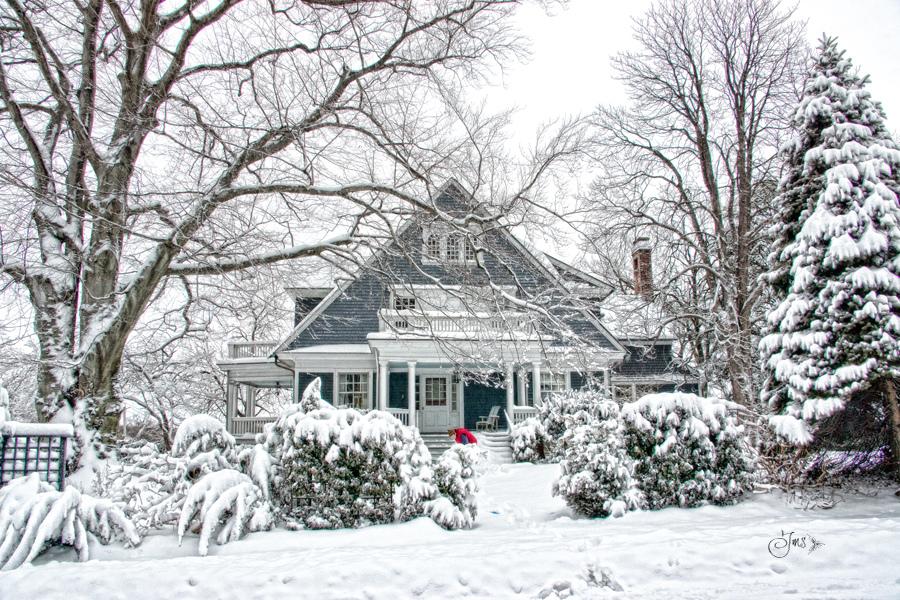 Jak chronić drewno w ogrodzie zimą?